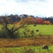Autumn Pasture Art Print