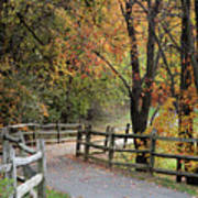Autumn Path In Park In Maryland Art Print