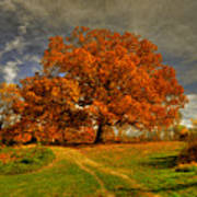 Autumn Picnic On The Hill Art Print