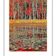 Autumn Pond And Lily Pads Poster Art Print