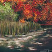 Autumn Pond Art Print