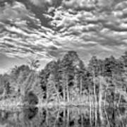 Autumn Reflection 2 Bw Art Print