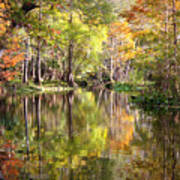 Autumn Reflection On Florida River Print by Carol Groenen