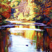 Autumn Reflections Art Print by David Lloyd Glover