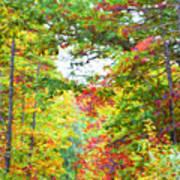 Autumn Road - Digital Paint Art Print
