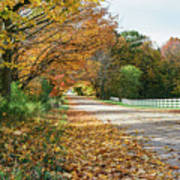 Autumn Road With Fence  Art Print