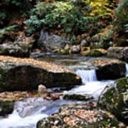 Autumn Rushing Mountain Stream Art Print by Thomas R Fletcher