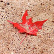 Autumn Sand Art Print