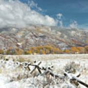 Autumn Snowfall In Aspen Art Print