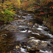Autumn Stream Print by Andrew Soundarajan