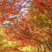 Autumn Trees Digital Watercolor Art Print