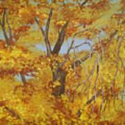 Autumn Treetops Art Print