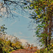 Autumn Up Hill Art Print