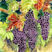 Autumn Vineyard In Its Glory - Batik Style Art Print