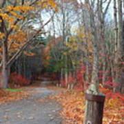 Autumn Walk At West Thompson Lake  Art Print