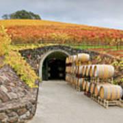Autumn Wine Cave Art Print