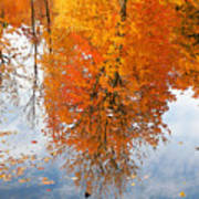 Autumn With Colorful Foliage And Water Reflection 19 Art Print