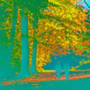 Autumn Woodland Walk Turquoise Art Print