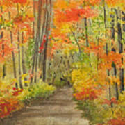 Autumn Woods Art Print