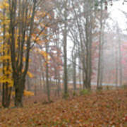 Autumnal Mist Art Print
