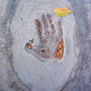 Autumns Child Or Hand In Concrete Art Print