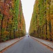 Autumn's Colours Art Print
