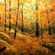 Autumns Hidden Sanctuary Art Print
