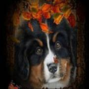 Autumn's Pup Art Print