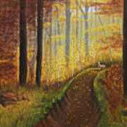 Autumn's Wooded Riverbed Art Print