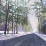 Avenue Of The Pines-winter Art Print