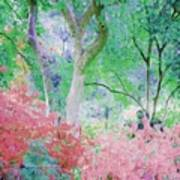 Azalea Flowers And Tree Coral  Art Print