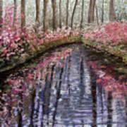Azalea River Art Print