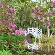 Azaleas And Bridge In Magnolia Lagoon Art Print