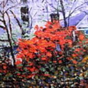 Azaleas In Georgia Art Print