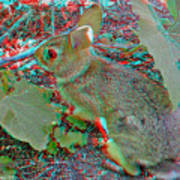 Baby Bunny - Use Red-cyan 3d Glasses Art Print
