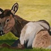 Baby Elk Art Print