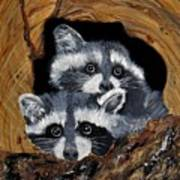 Baby Raccoons Art Print