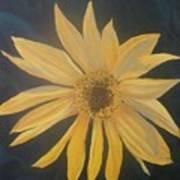 Baby Sunflower Art Print