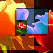 Backlit Roses Art Print