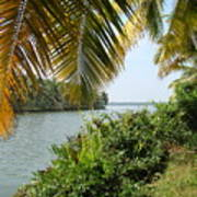 Backwaters Of Kerala-2 Art Print