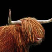 Bad Hair Day - Highland Cow - On Black Art Print