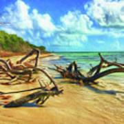 Bahia Honda State Park Art Print