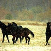 Bailando De Los Caballos En Viento Y Nieve Art Print