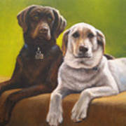 Bailey And Hershey Art Print