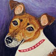Bailey Terrier Mix Art Print
