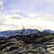 Baker Dam Colorado Art Print