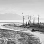 Bako National Park At Low Tide. Art Print