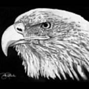 Bald Eagle #4 Art Print