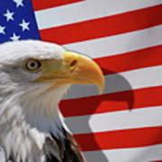 Bald Eagle And Us Flag Art Print