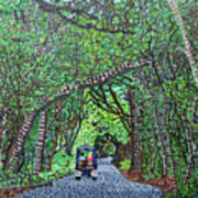 Bald Head Island, Federal Road Art Print